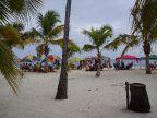 Palmen und Sand