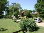 Krasse Pflanzen in Villa Gesell