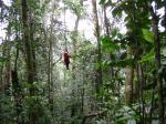 Tarzan-Style