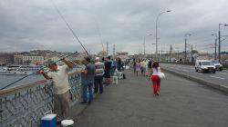 Brücken-Angler