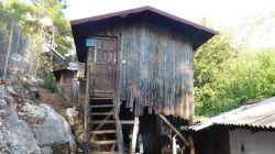 Mein Dormitory-Baumhaus