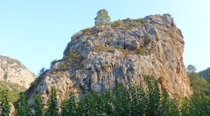 Blick zum Fels