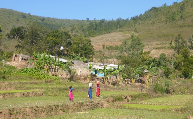 Araku Valley – Erster Blick auf die Stammesgebiete