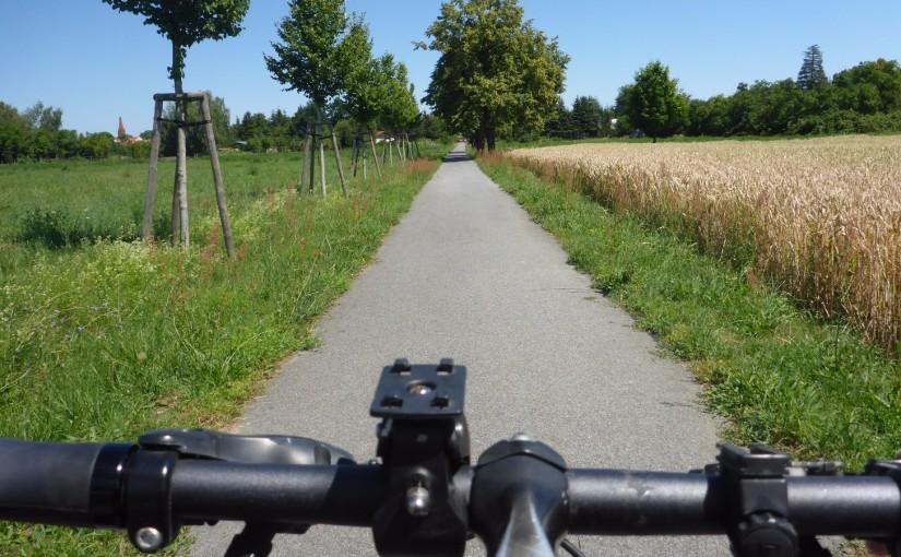 R1 – Auf dem Fahrrad-Highway nach Polen