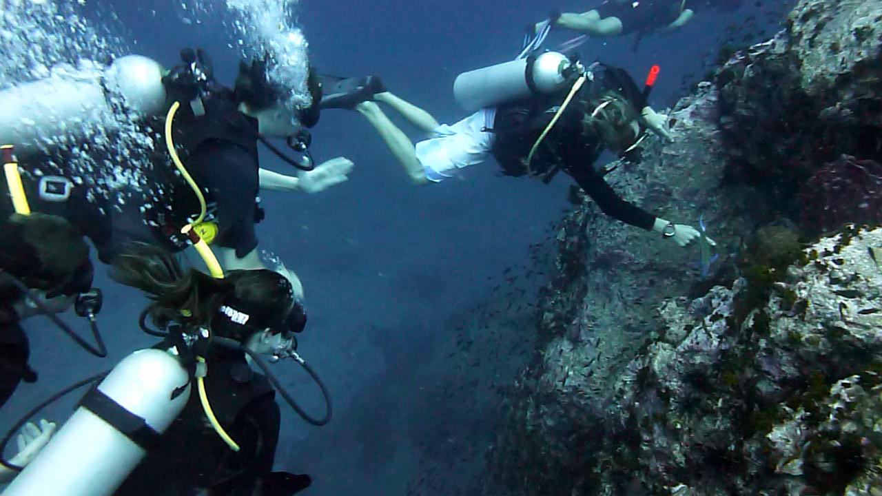 Korallenriff am Chumphon Pinnacle